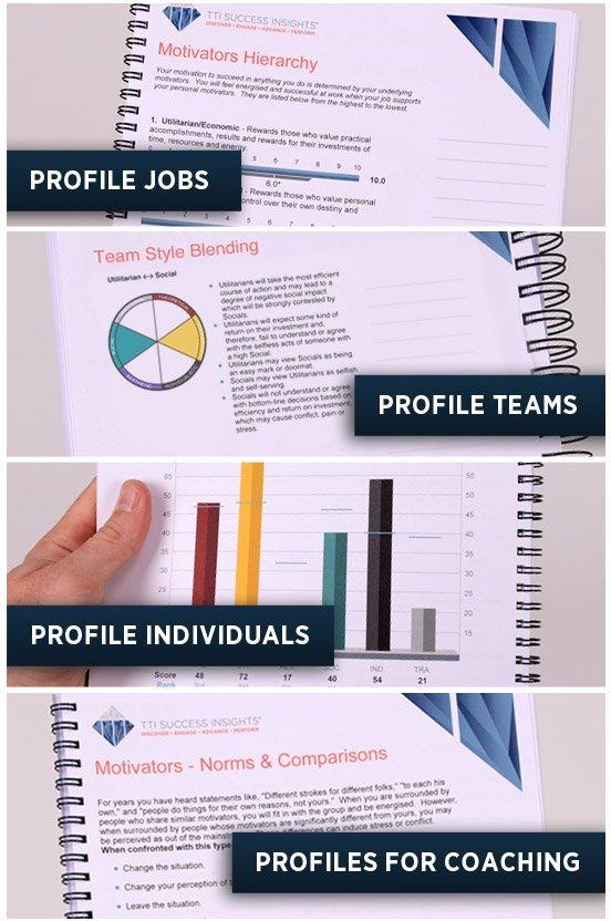 Motivators Profile